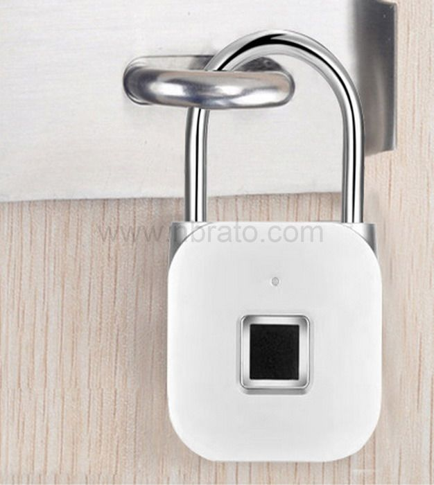 2020 new product high quality waterproof smart lock small keyless electronic lock Fingerprint padlock