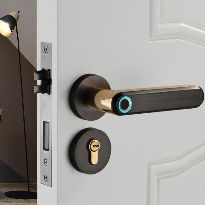 2020 new product Zinc Alloy Material Handle Electronic Smart Fingerprint Door Lock
